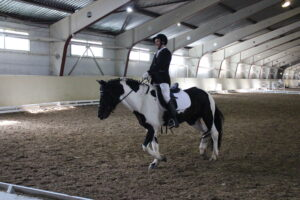 3rd INAS Para Equestrian Video Competition