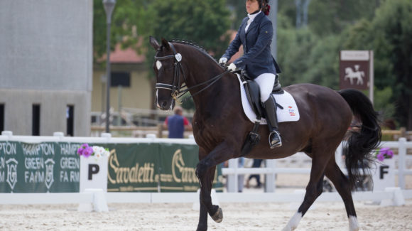 Spain's Villalba triumphs in Para equestrian video competition